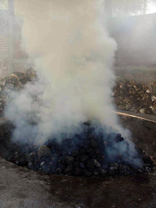 The roasting pit at Fidencio.  Photo: Susan Coss