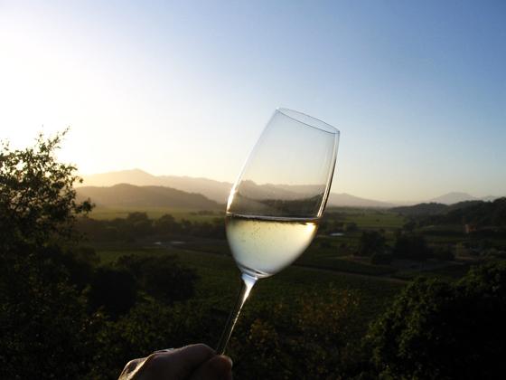 glass of wine against vineyard landscape
