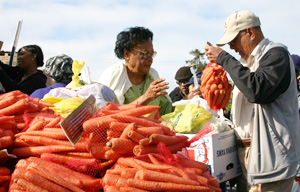 Food bank volunteers help get fresh produce to people quickly. Photo: Courtesy Alameda County Community Food Bank