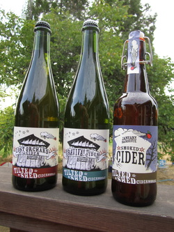 Three varieties of Tilted Shed bottled cider