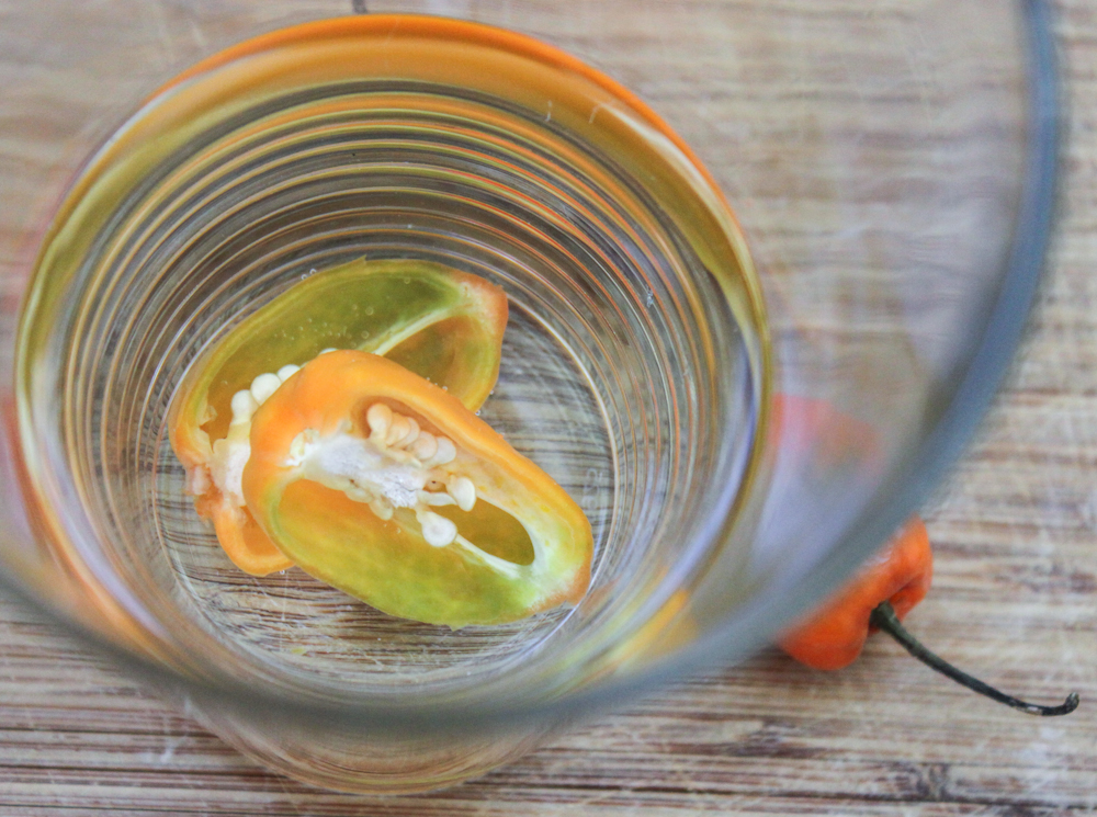 Habanero Tequila