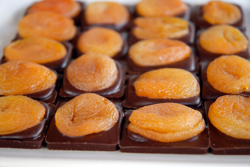 Dried Apricot Plaques