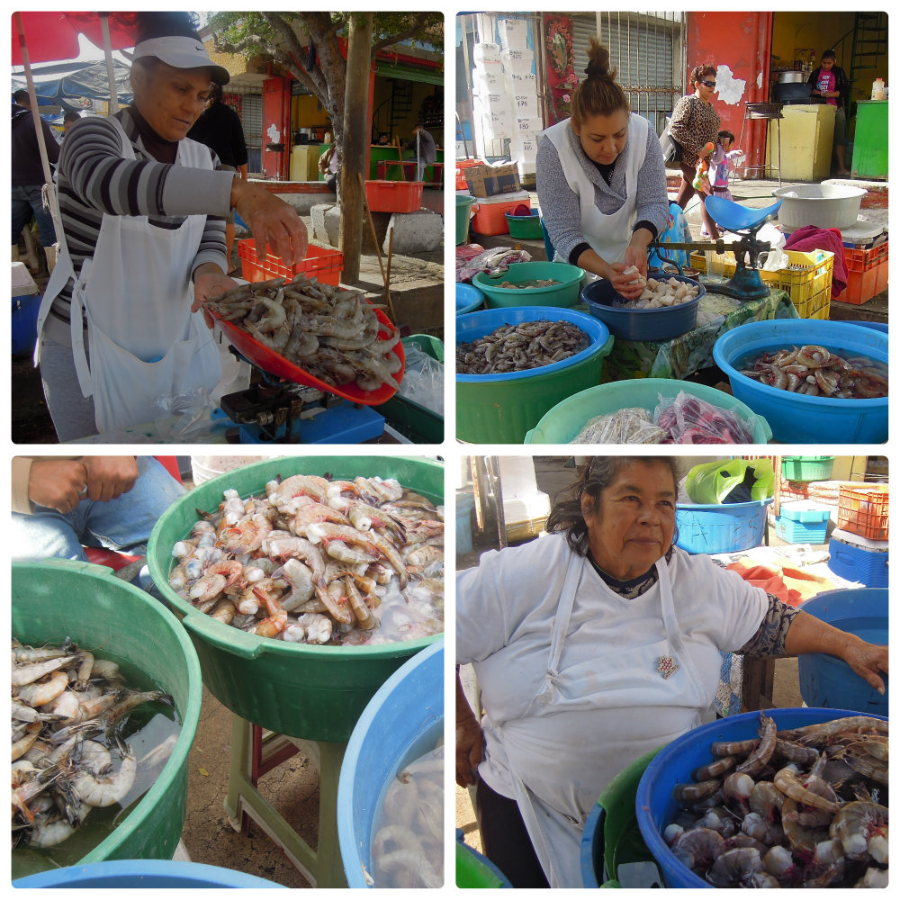shrimp ladies of Mazatlan