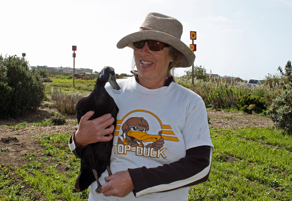 Denise Arasin is a volunteer at the Homeless Garden Project farm and founder of Duck Lovers Adoptions.