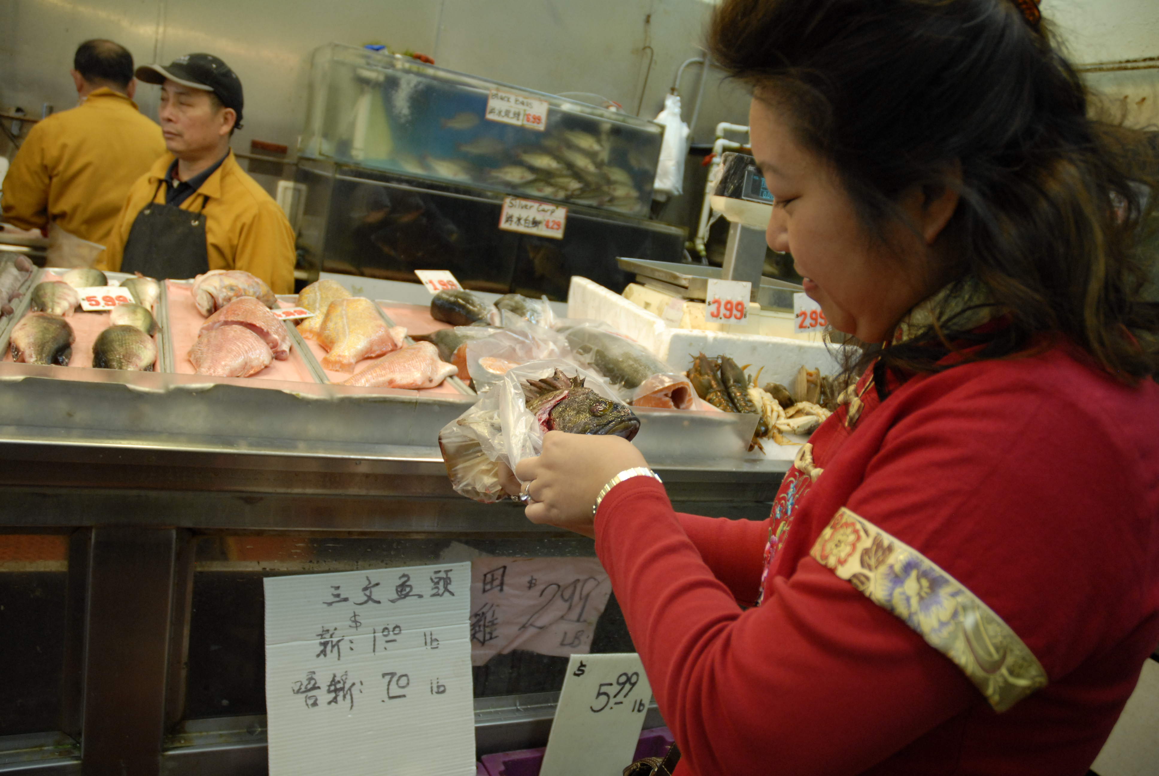 Lisa Li examines Gopher fish at E&F Market in Oakland Chinatown. Photo: Wendy Goodfriend