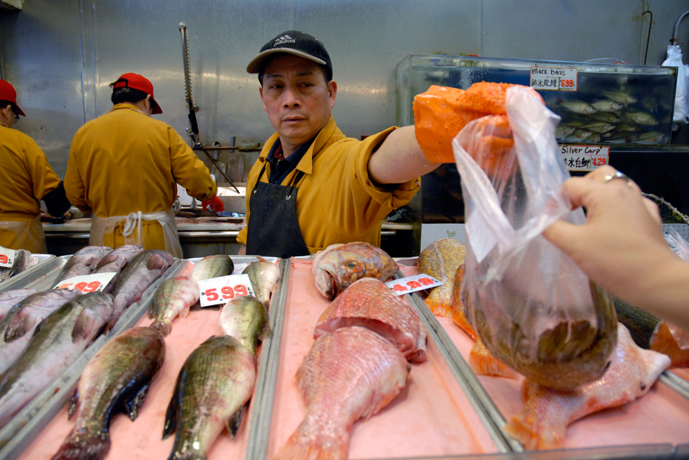 Buying Gopher fish at E&F Market
