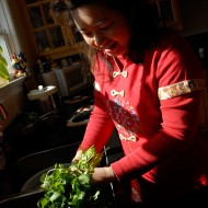 Lisa Li cleans cilantro for whole fish. Photo: Wendy Goodfriend