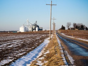 Bowman bought ordinary soybeans from this small grain elevator and used them for seed. Photo: Dan Charles/NPR