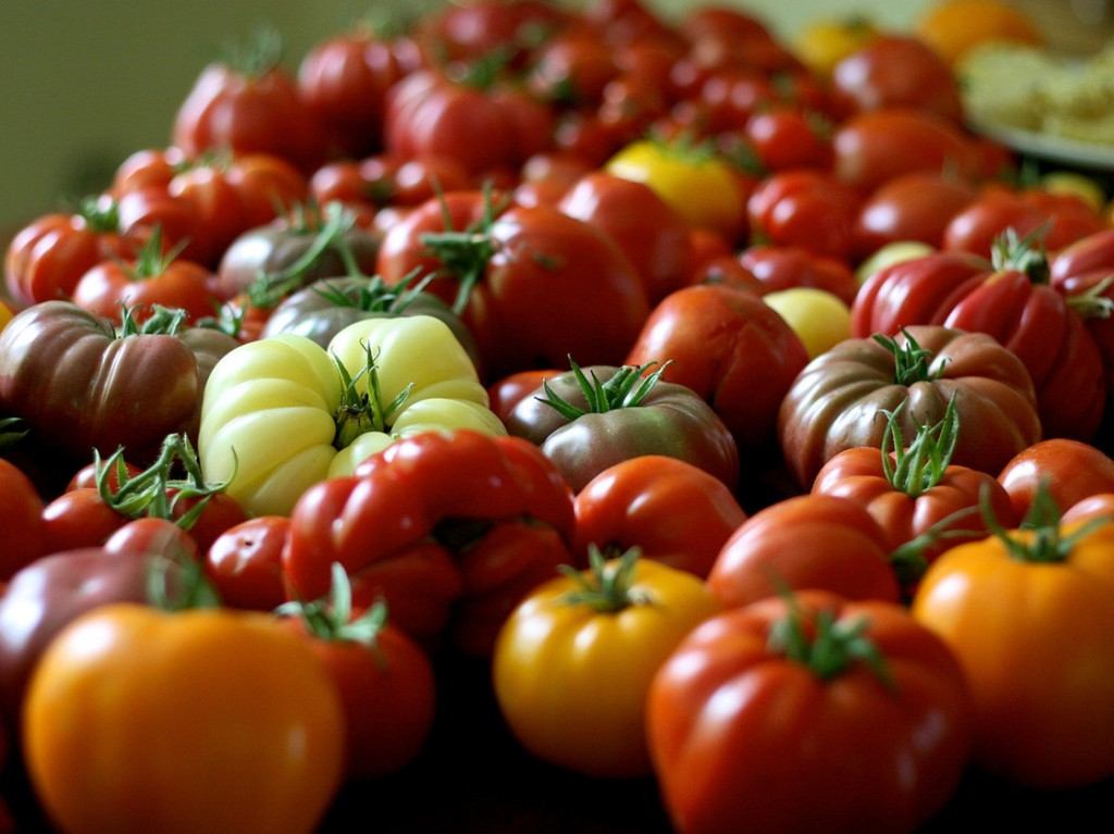 Organic tomatoes come in all shapes and sizes. Photo: Chiot's Run/via Flickr