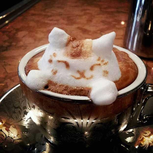 The Cat. Photo: Courtesy of Kazuki Yamamoto