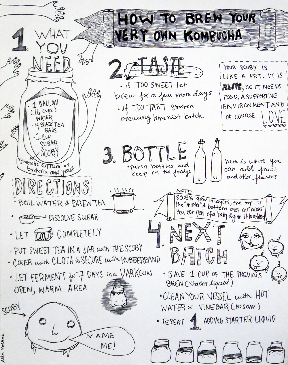 Kombucha instructions. Illustration by Lila Volkas