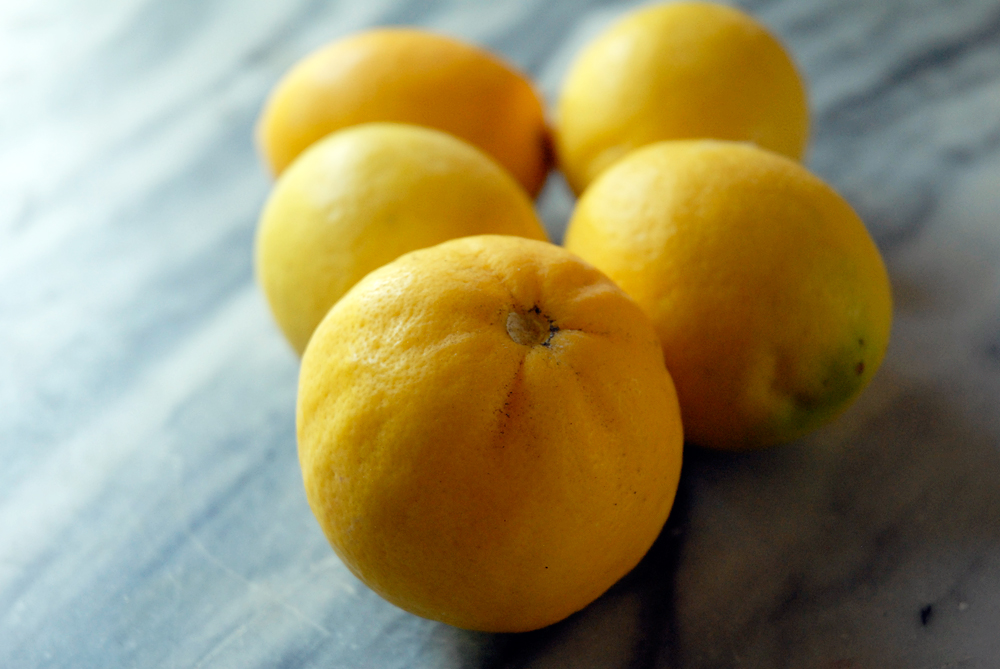 Meyer Lemons. Photo: Wendy Goodfriend