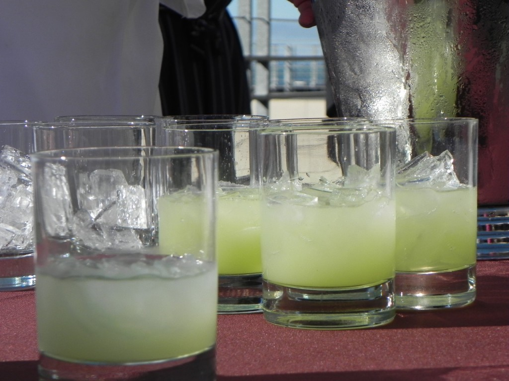 Douglas fir and Cucumber Gin Sours kicked off the evening on the Hotel Vitale Terrace.