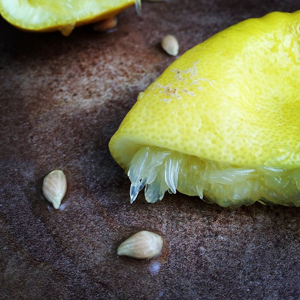 Lemons squeezed. Photo: Michael Procopio