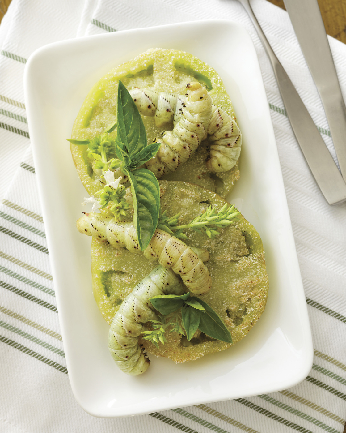 Fried green tomato hornworms. Chugrad McAndrews/ Photo: Reprinted with permission from The Eat-A-Bug Cookbook