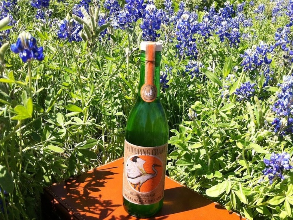 The Texas Sake Company uses a Texas variety of rice for its Whooping Crane brew. Photo: Courtesy Texas Sake Company