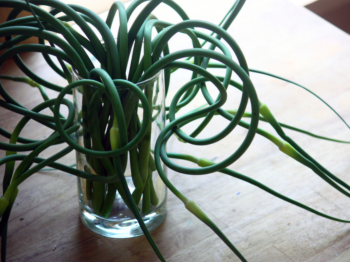 Garlic Scapes. Photo: T. Susan Chang for NPR