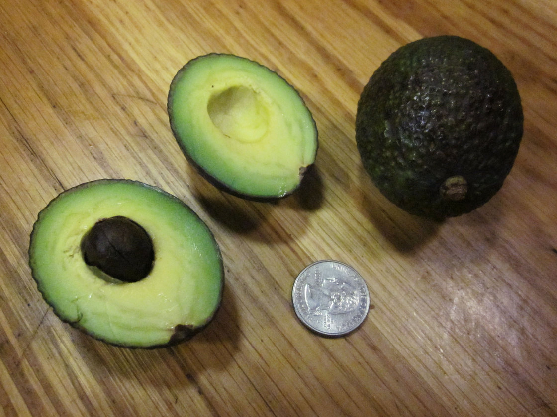 This season's avocados are the smallest in memory. We found some that were as tiny as 47 grams. Photo: Alistair Bland/NPR