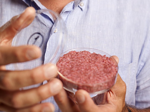 The burger developed by Professor Mark Post of Maastricht University in the Netherlands. Photo: David Parry / PA Wire