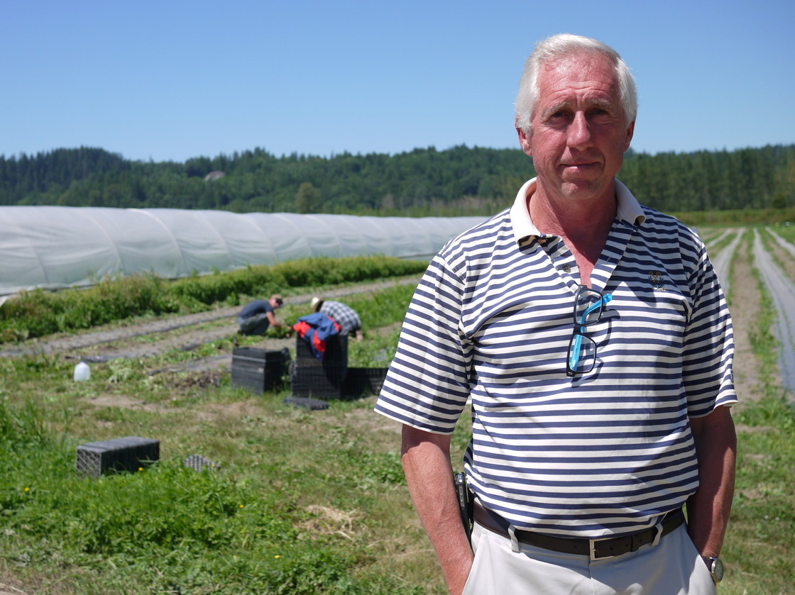 Ted Andrews, CEO of HerbCo International, says the H-2A agricultural guest worker program improvements. Liz Jones/NPR