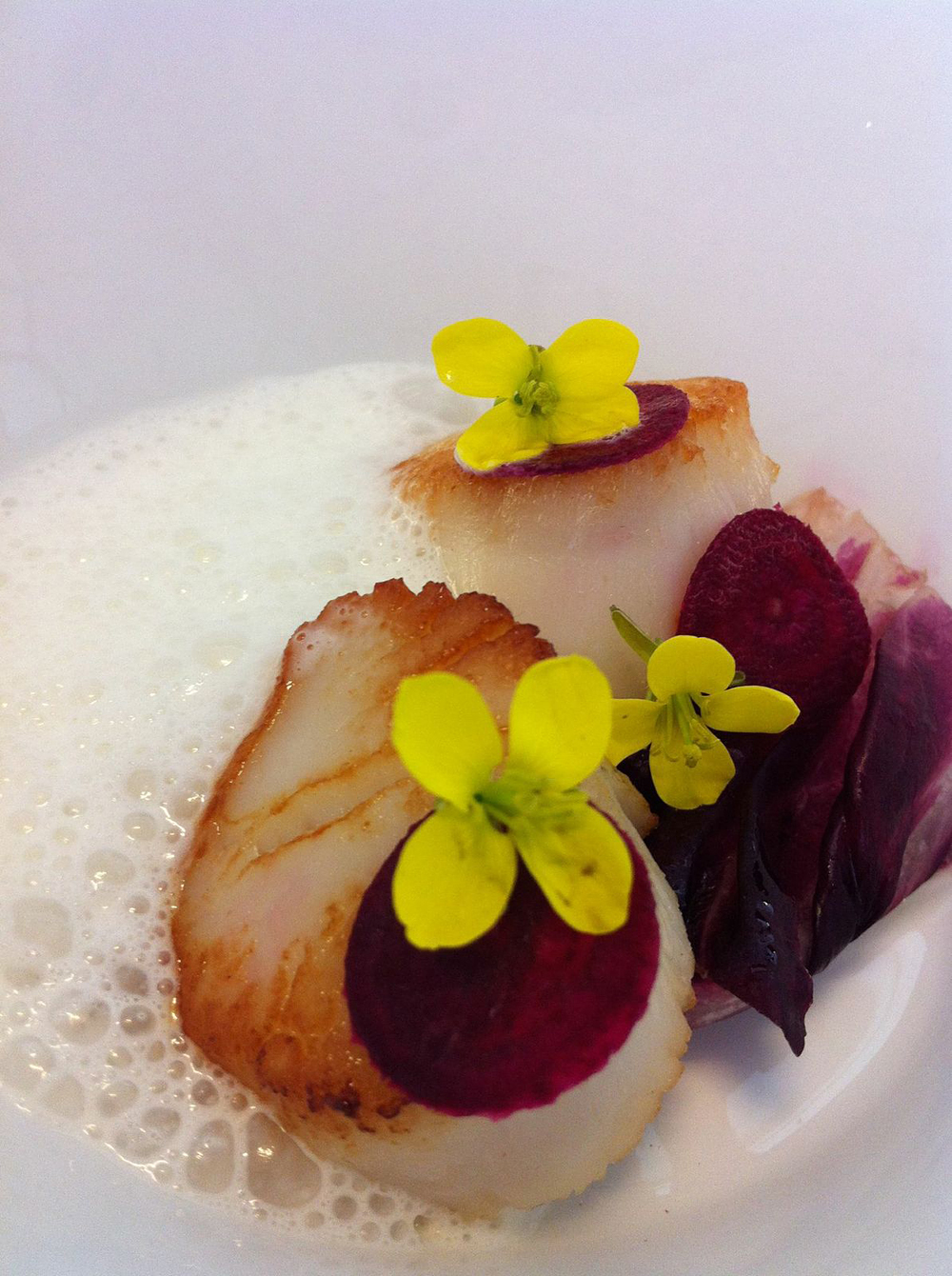 Seared Scallops with Grilled Radicchio, Shaved Beet, Truffle Parm Foam. Photo courtesy Nosh SF