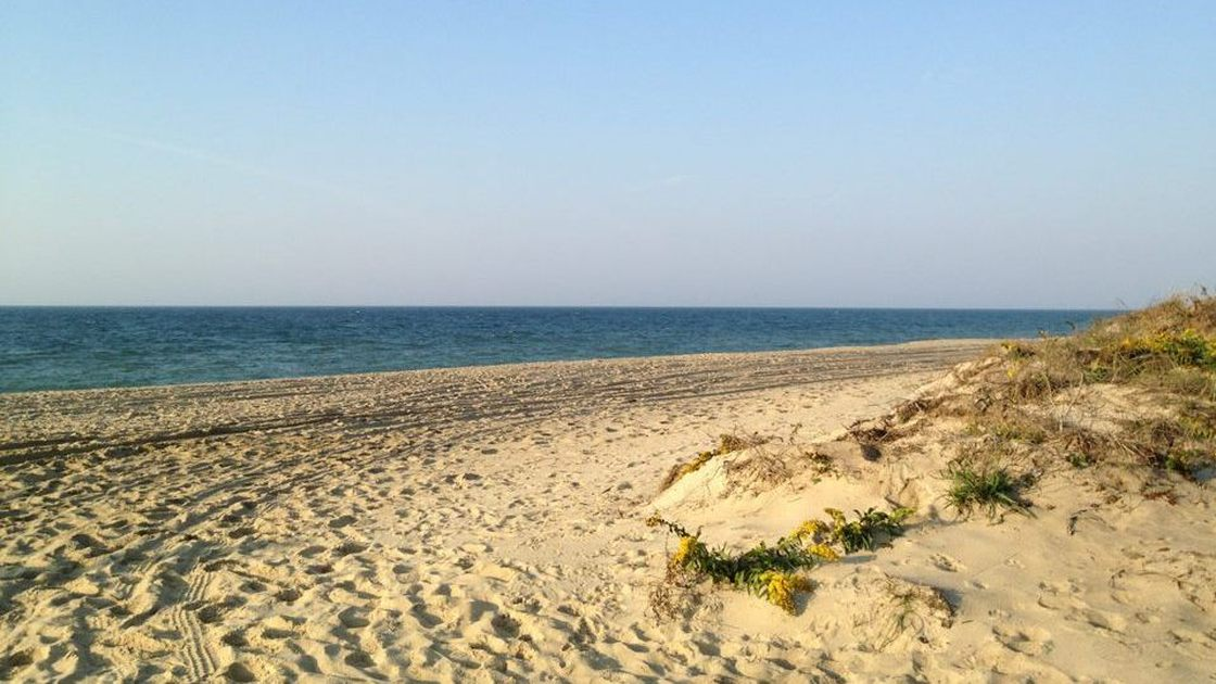 The Martha's Vineyard beach where Heidi Feldman collects saltwater to make sea salt. Photo: Courtesy of Heidi Feldman