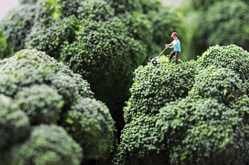"Broccoli Mower: ""Douglas stubbornly refused to accept his wife's opinion that he had let the lawn go too long without attention."" Photo: Christopher Boffoli/Courtesy Workman Publishing"