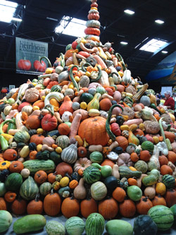 Squash display from last year's National Heirloom Exposition. Photo: CUESA