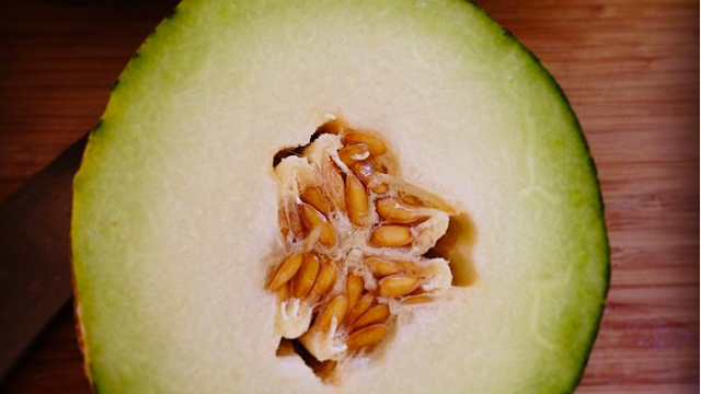 When Life Gives You Melons…