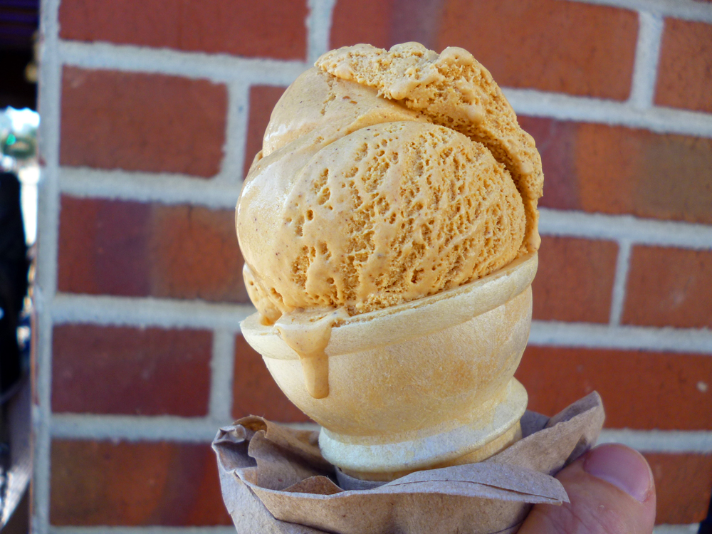 Mitchell's Pumpkin cone. Photo: Stephanie Rosenbaum