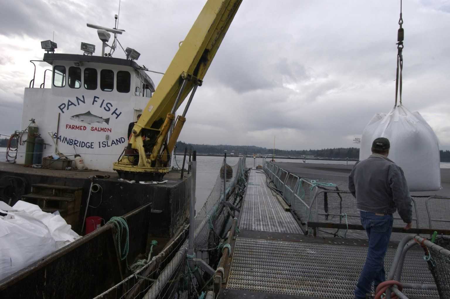 Employees at Pan Fish USA, a salmon fish farm, unload fish feed in Bainbridge Island, Wash. Photo: Ron Wurzer/Getty Images