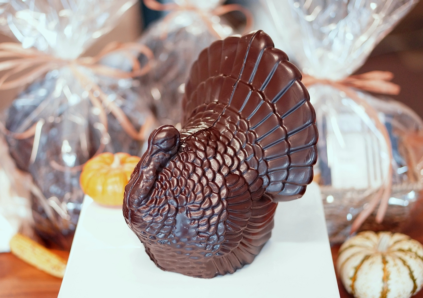 Poco Dolce Chocolate Turkey for the Thanksgiving. Photo: Albert Moriguchi