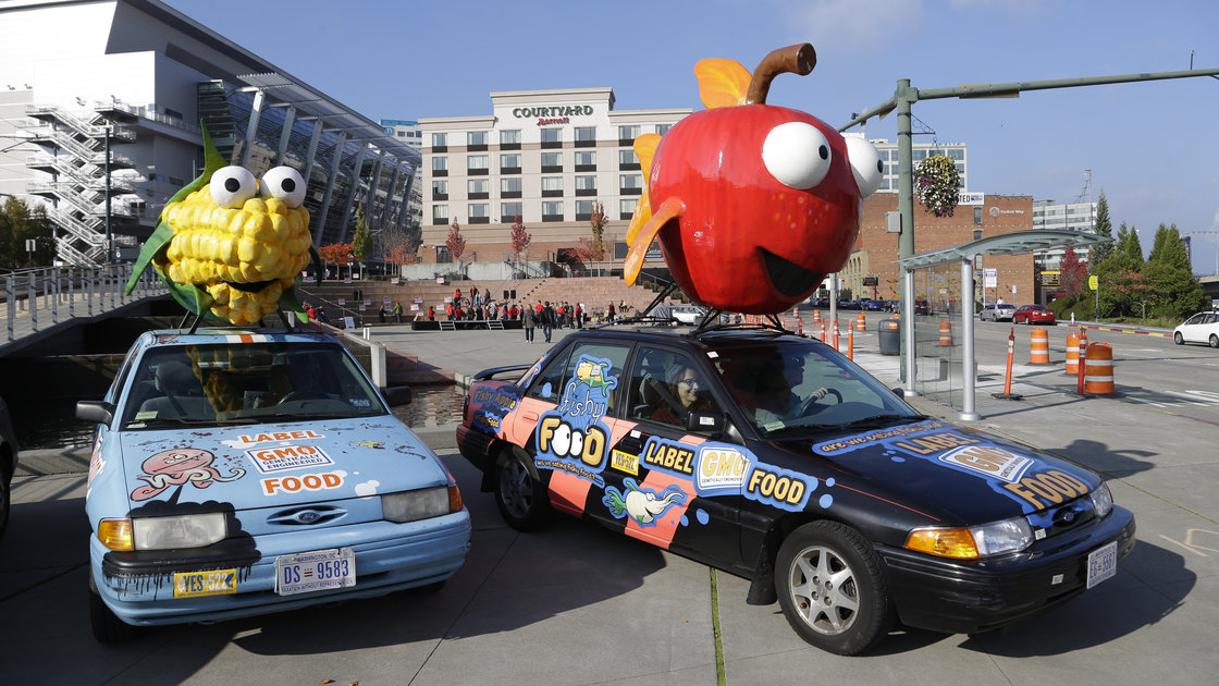 "Cars in Tacoma, Wash., promoting a ""YES"" vote on I-522 in Washington state in October 2013. The initiative, which appears to have failed, would have required genetically engineered foods to be labeled. Photo: Ted S. Warren/ASSOCIATED PRESS"