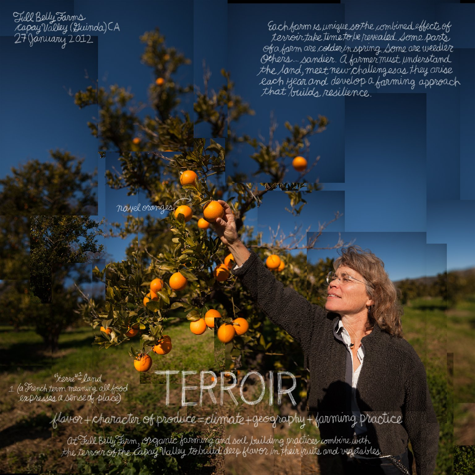 Terroir artwork