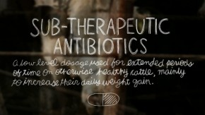 Sub-therapeutic antibiotics