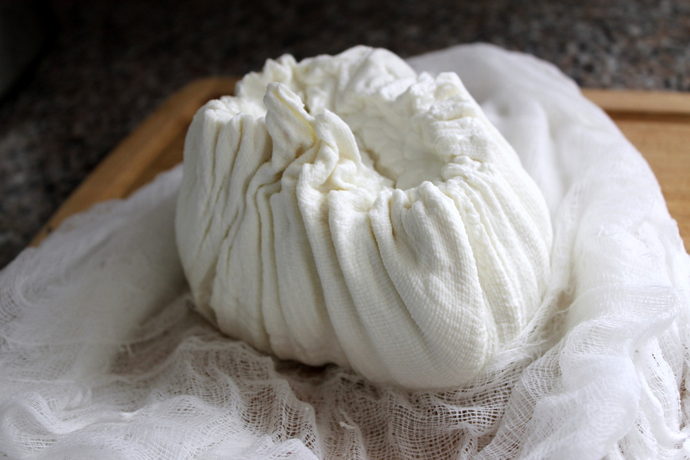 Once the cheese has firmed up, it should hold its shape in a ball. Photo: Kate Williams