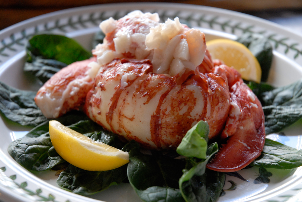 Cooking Whole Live Lobster: A Photo Tutorial   Bay Area Bites   KQED Food