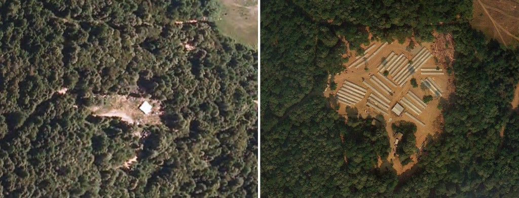 Left: A North Coast marijuana grow site in 2010, with nothing but a little white roofed structure. Right: The same site in 2012. Photo: Google Earth