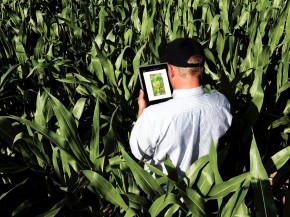 Companies, like John Deere, that are collecting farmers' data may be able to see how much grain is being harvested, minute by minute, from tens of thousands of fields. Photo: Steve Dolan/Visual Services-East Moline