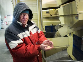 Lynn Clarkson founded Clarkson Grain, which accepts only non-GMO grain. Photo: Dan Charles/NPR