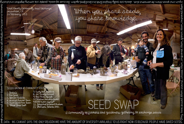 "The Lexicon of Sustainability explores seed banks, seed swaps and the ""seed sovereignty"" movement"