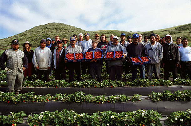 Swanton Berry Farm Group. Photo: Courtesy of Swanton Berry Farm
