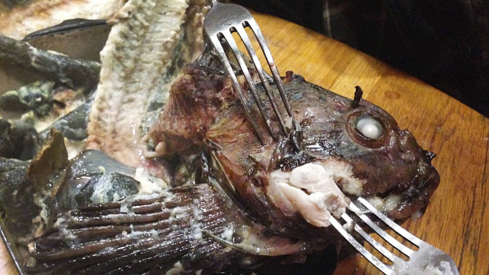 Why we should quit tossing fish heads and eat em up for How do fish eat