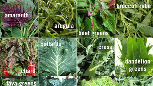 CUESA's Guide to Spring Greens