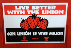 A Swanton Berry union sign. Photo: CUESA