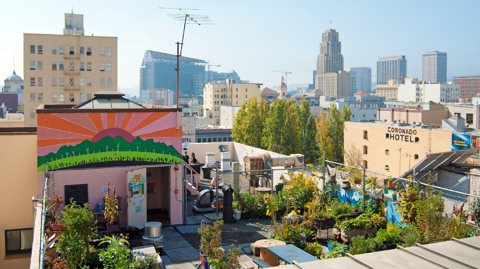 Graze the Roof is a community-produced garden that grows vegetables on the rooftop of a church in San Francisco. Photo: Sergio Ruiz. Flickr