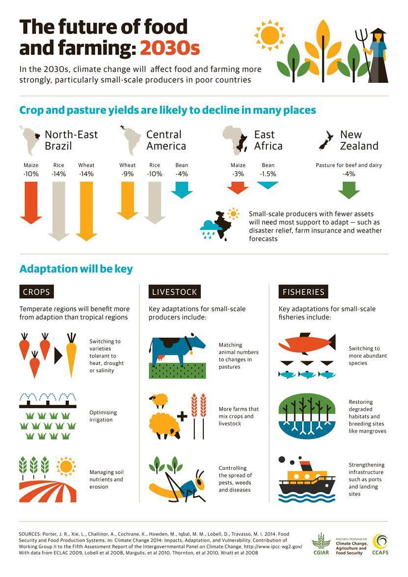 In the 2030s, climate change will affect food and farming more strongly, particularly small-scale in poor countries. Infographic: CGIAR