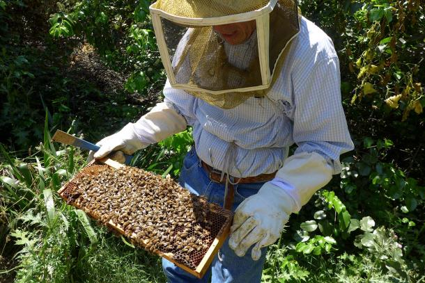 Bill Snyders of Snyders Honey. Photo by Denise Tarantino