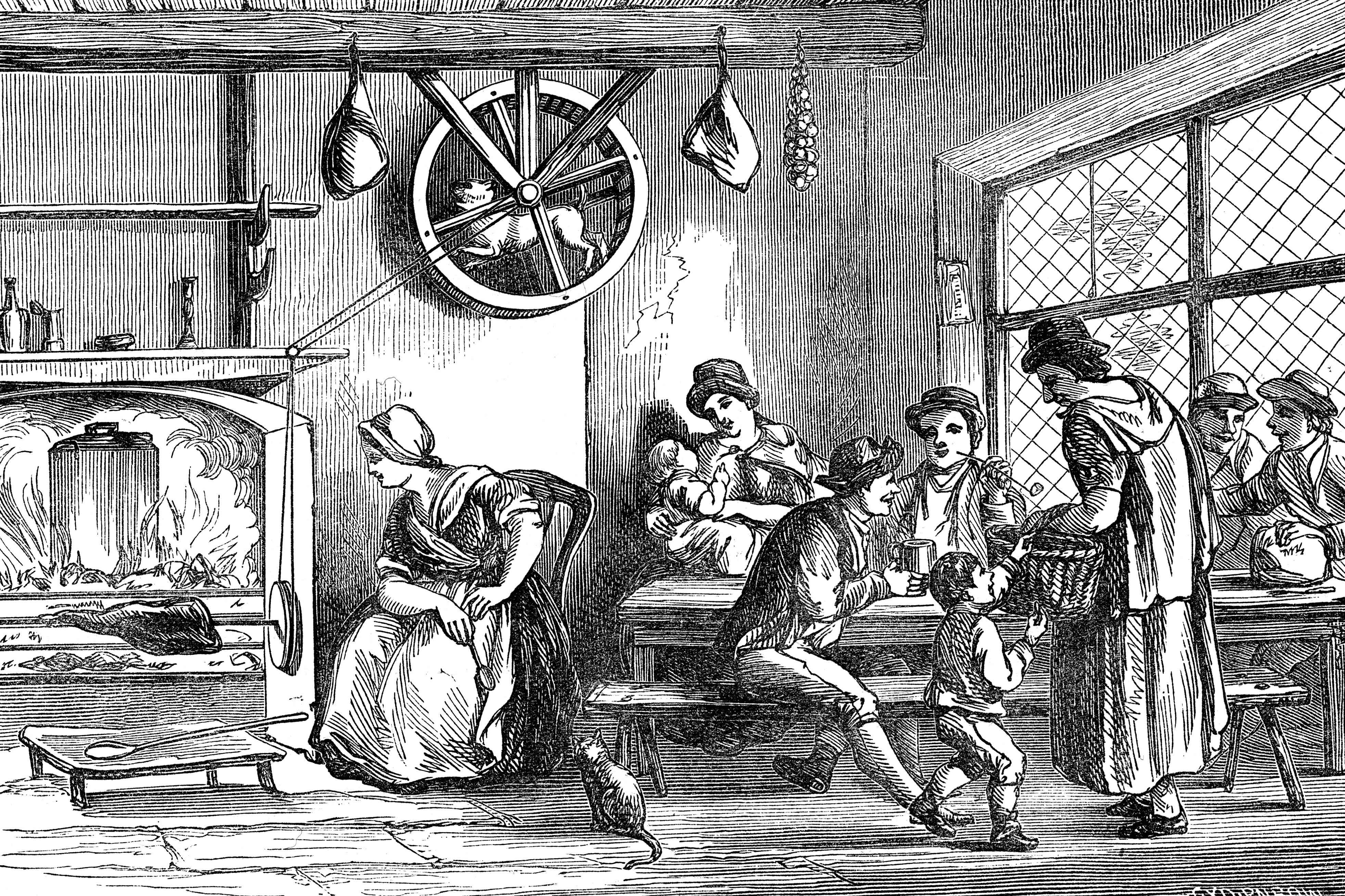 Turnspit Dogs: The Rise And Fall Of The Vernepator Cur