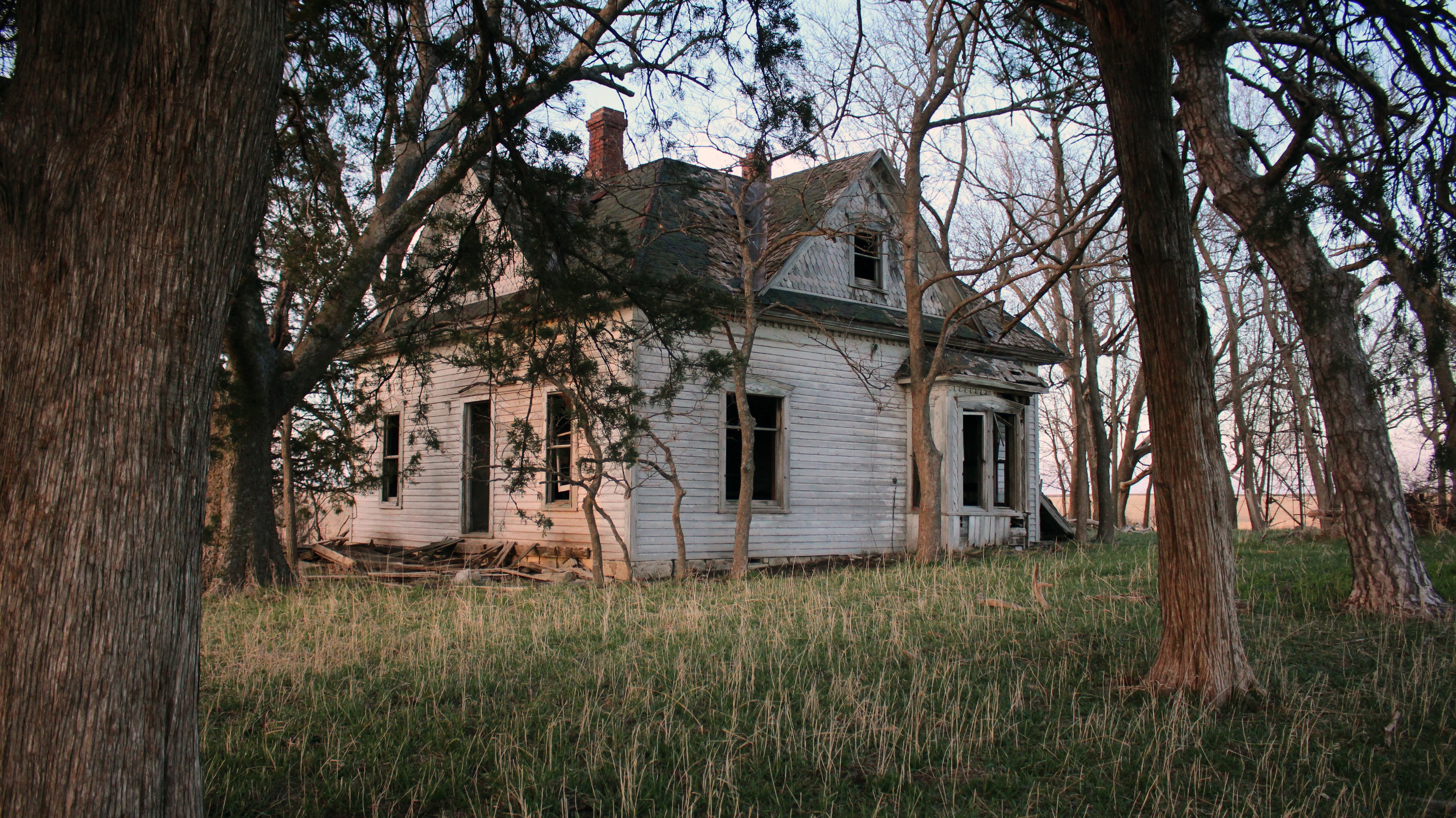 An abandoned farmstead near Wheaton, Kans. Photo: Dan Charles/NPR
